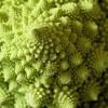 Blomkål med skalbar struktur - foto av Smabs Sputzer